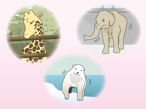 「退屈で変化のない生活環境」こそ、動物の最大の敵