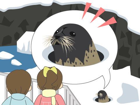 ≪例≫旭川市旭山動物園「あざらし館のプール凍らせ作戦」