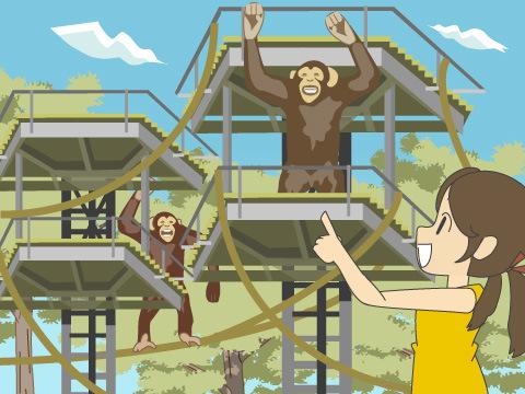 鉄塔の森という発想