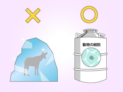 動物園に設置されている大きな魔法瓶の正体とは?