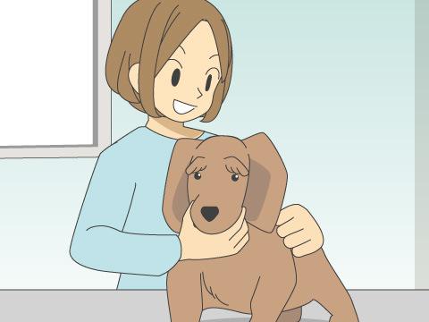 犬の保定法