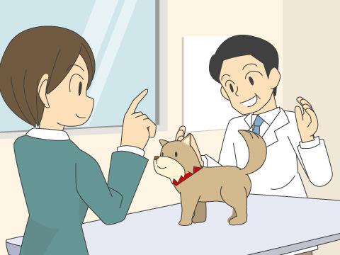 動物病院で困らないための犬のしつけ