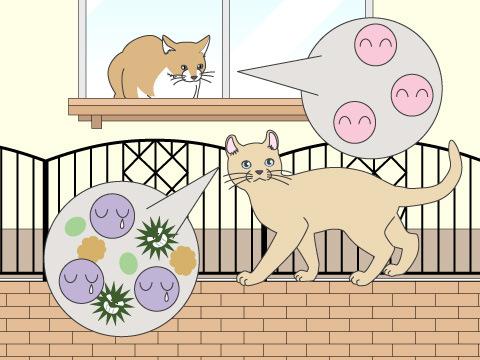 ネコ白血病ウイルス