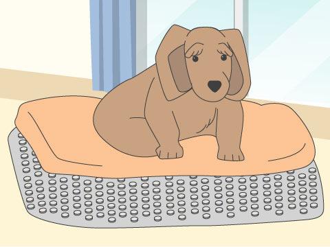 快適でケアの楽なベッドを作る