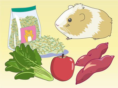 まずはきちんとした栄養管理を