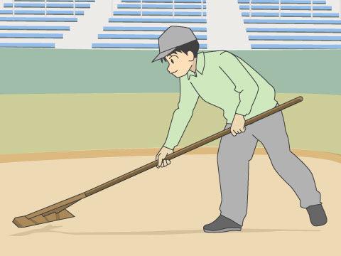野球場の基本は天然芝