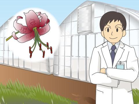 植物多様性の保全にとりくむ