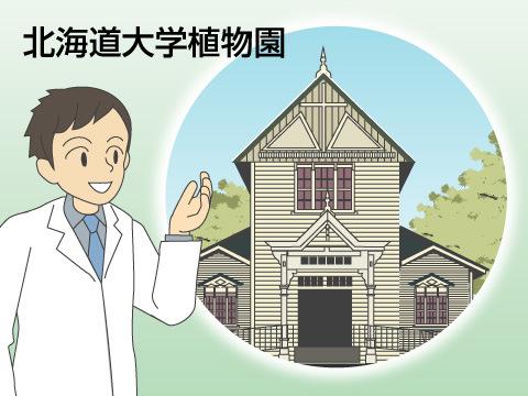 北海道大学植物園(札幌市)