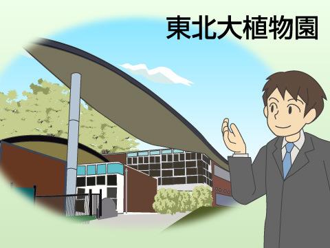 東北大植物園(秋田県秋田市)