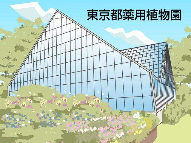 東京都薬用植物園(小平市)