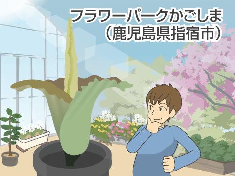フラワーパークかごしま(鹿児島県指宿市)