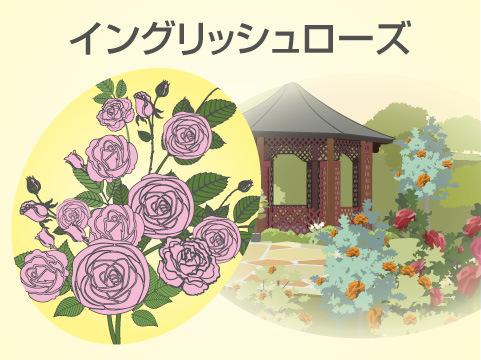 「世界のバラ園」と「バラのテーマガーデン」
