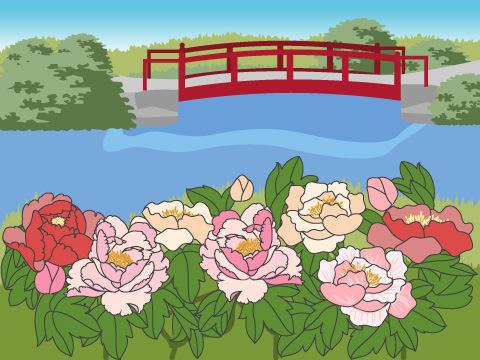 種類も数も、日本一の牡丹園!