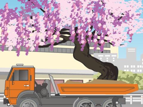 園内に350本以上の藤が咲き誇る!