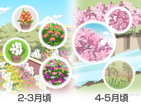 5月はバラの季節