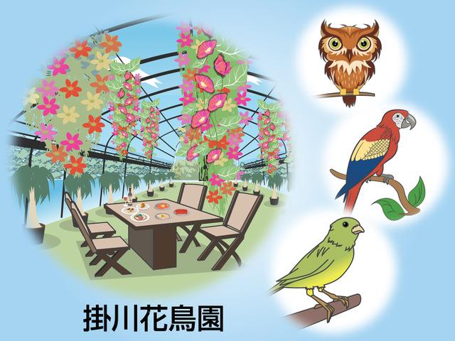 鳥好きのためのオアシス!掛川花鳥園
