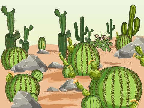 多肉植物が豊富な植物園