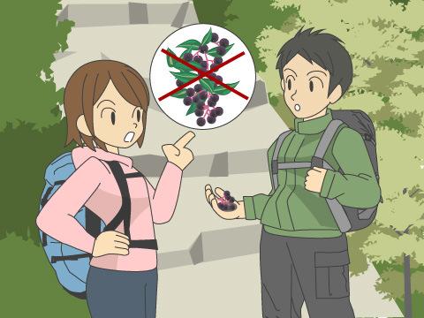 中毒事故を防ぐ注意点