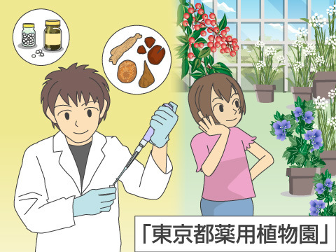 有毒植物をみることができる植物園