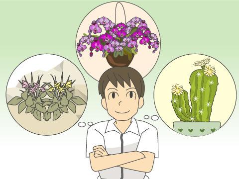 どんな植物を育てたいですか?