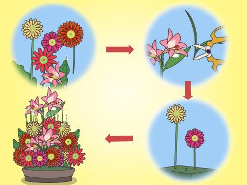 生け花の基本の流れ