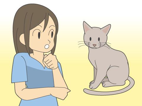 猫からうつる病気