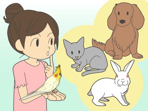 他の動物と一緒に暮らせる?