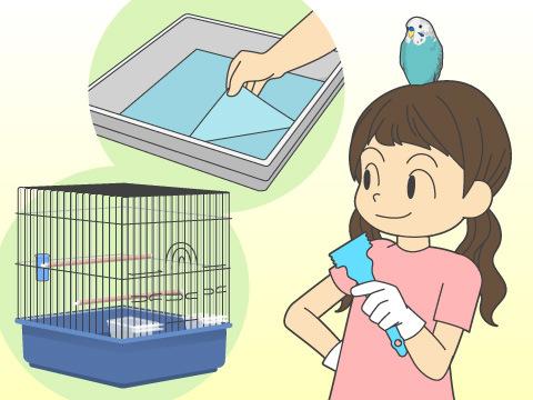 ケージの掃除の仕方