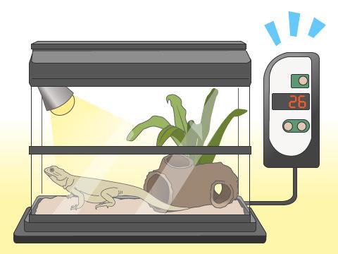 爬虫類飼育の便利なグッズ
