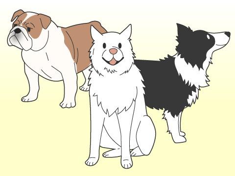 家族構成によっておすすめのペットは?