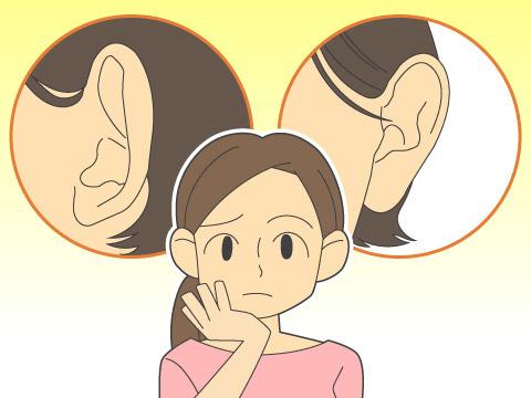 たち耳とは