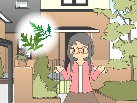 冬の花粉症