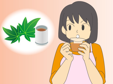 甜茶による民間療法