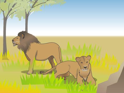 ンゴロンゴロ自然保護区/タンザニア