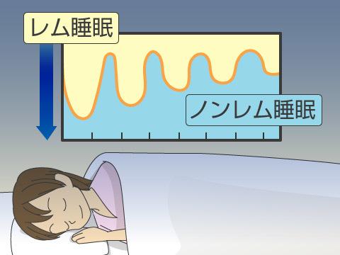 睡眠(質の高い眠りを得るポイント)