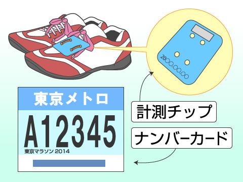 計測チップとナンバーカード