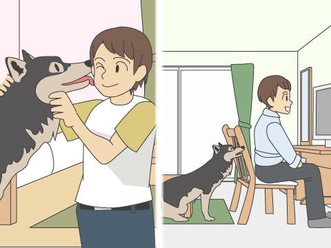 ペットとは正しい距離感で接しましょう