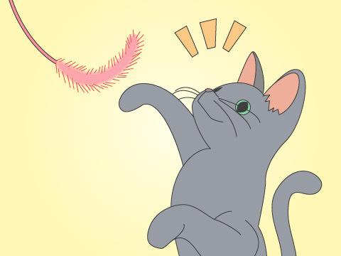 気ままな猫とも触れ合いは必須!