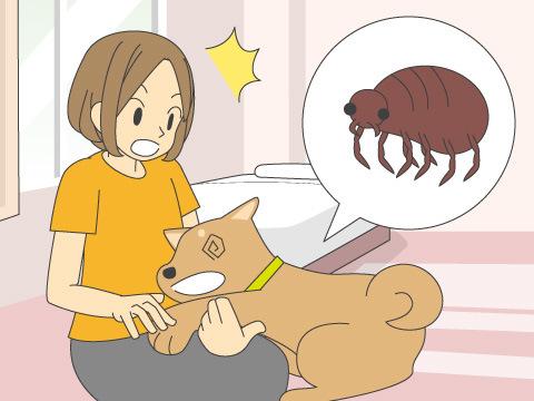 劣悪な空気環境はペットの健康に影響大!