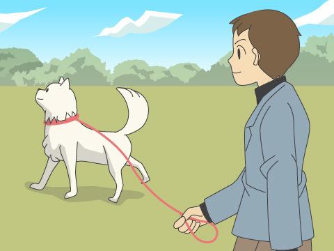 散歩コースや、周辺施設の確認を