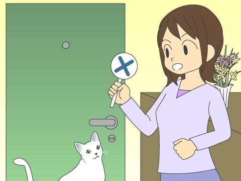 猫は外に出さないようにしましょう
