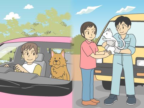 ペットの引越しの注意点