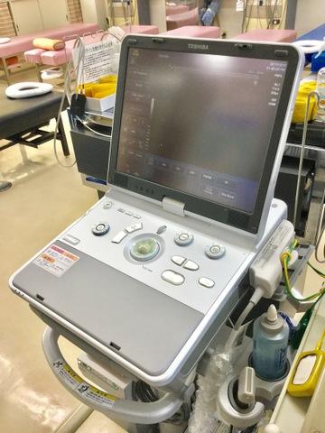 エコー(超音波)観察装置