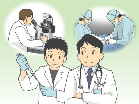 医師の仕事