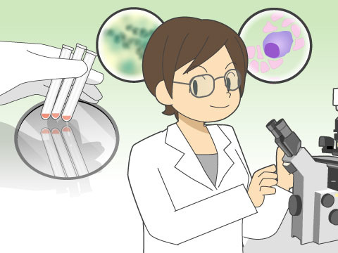 臨床検査技師の仕事