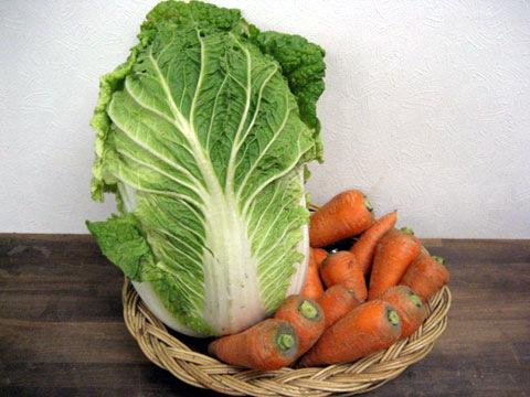 野菜(ヤサイ)