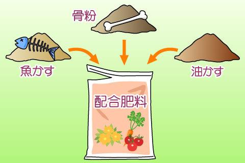 配合肥料(ハイゴウヒリョウ)