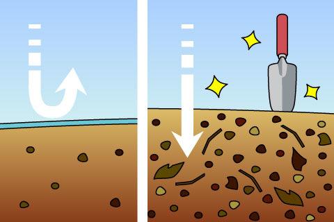 土壌改良(どじょうかいりょう)(ドジョウカイリョウ)
