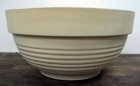 浅鉢(あさばち)(アサバチ)