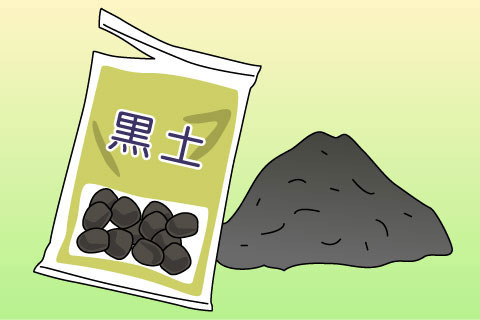 黒土(くろつち)(クロツチ)